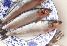 trimetilaminúria e sindrome do odor de peixe